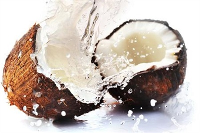 What's the Coconut Oil Craze?